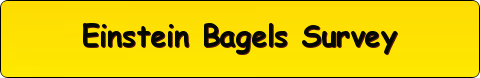 Einstein Bagels Survey